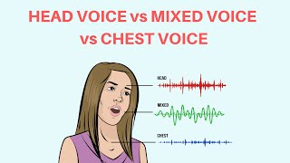 What Is Chest Voice, Mixed Voice, Head Voice And Falsetto?