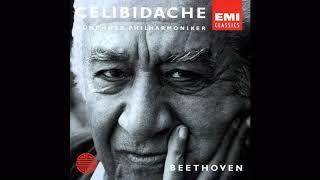 Скачать Beethoven Symphony No 5 Celibidache MPO 1992
