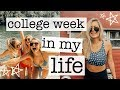 college week in my life: lake day, 500K subscribers, date night