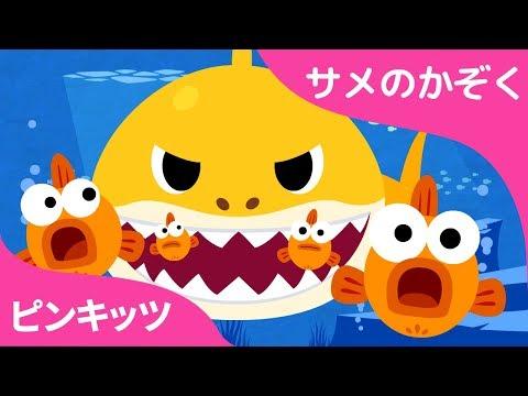 Baby Shark | サメのかぞく 英語 |  どうぶつのうた | ピンクフォン童謡