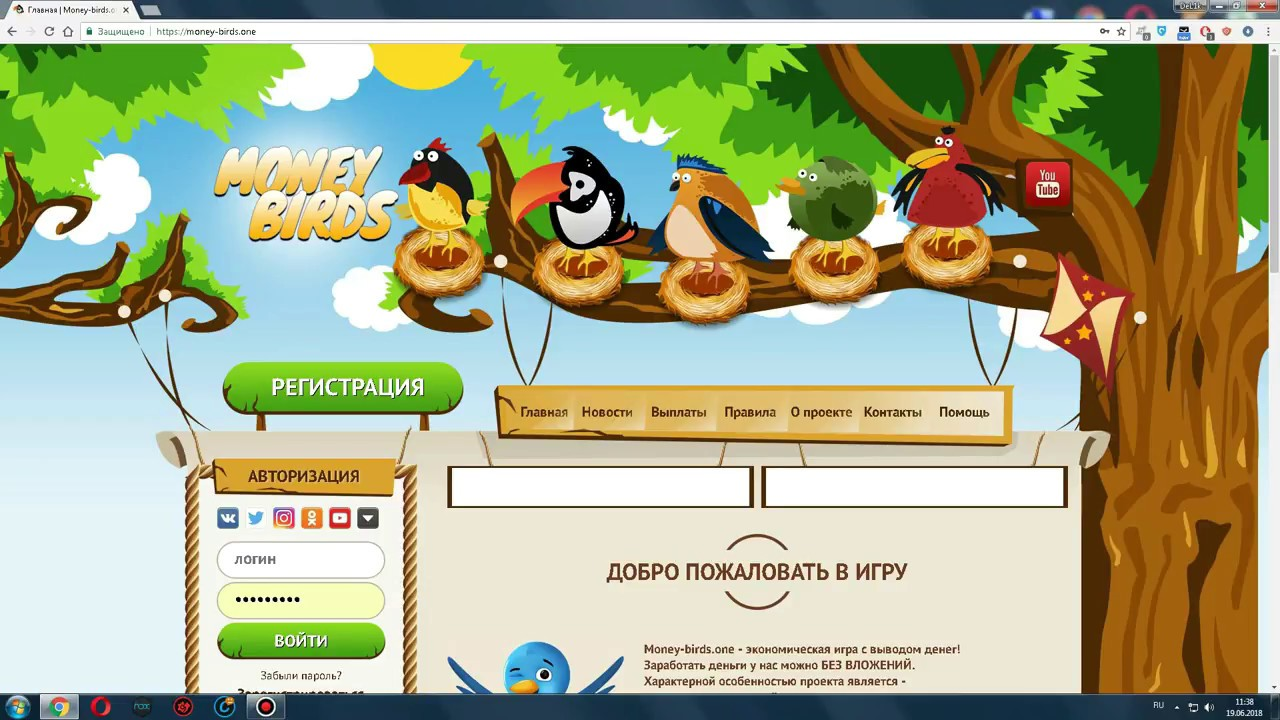 заработок money birds в интернете
