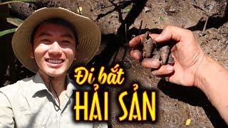 BẮT HẢI SẢN ở rừng bần lớn nhất Việt Nam |Món ăn đặc sản Miền Tây