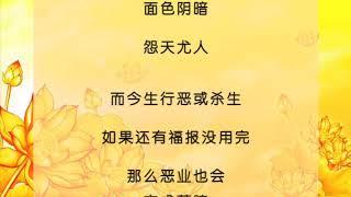 热播视频《白话佛法》 第一册 11 善事和功德的区别