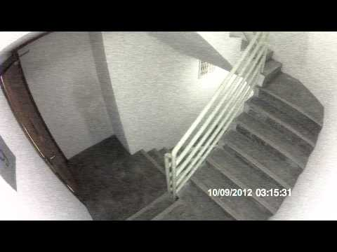 Stairwell Security Footage of Female Ghost, Age unknown. Public help needed. - GWPT