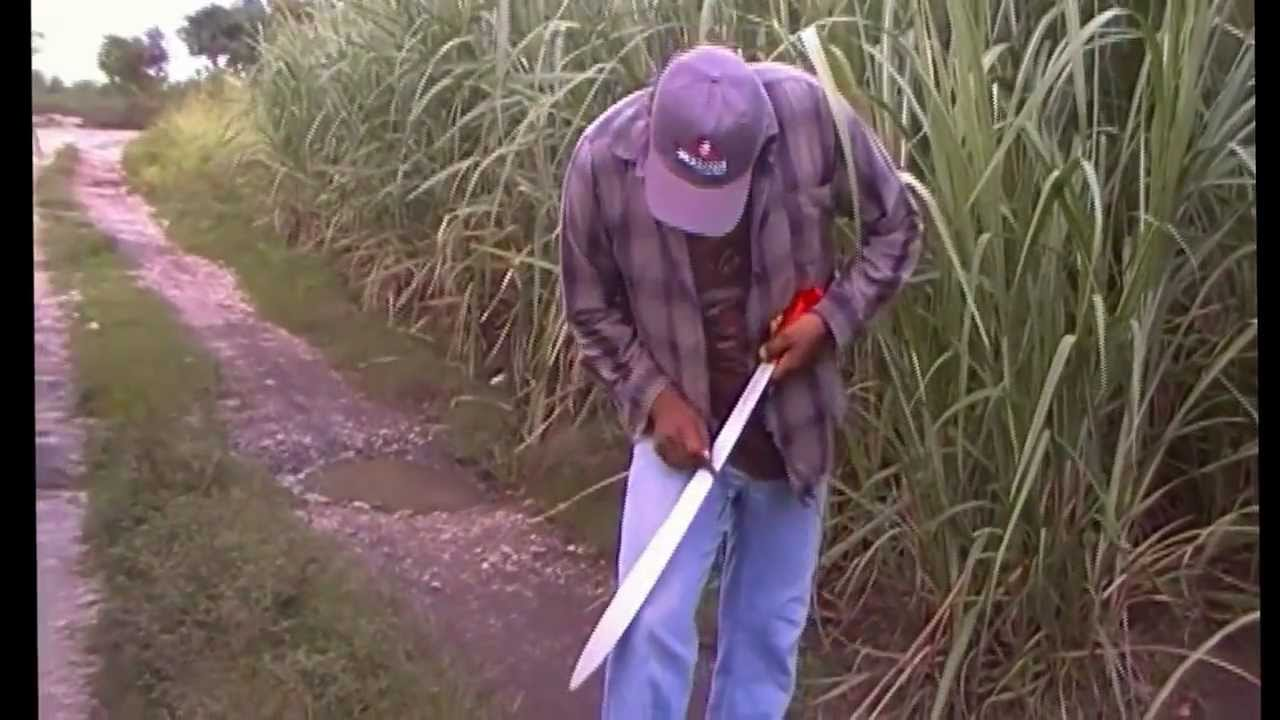 Bellota machete afilado y corte maleza youtube for Cuchillo de pescado como se usa