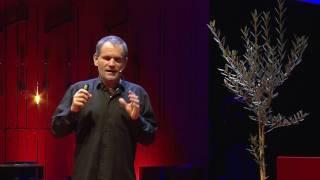 Foglie dallo spazio | Loris Vescovo | TEDxTrento