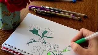 Deseneaza flori de camp - Ilustratie cu flori