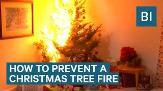 How To Prevent A Christmas Tree Fire This Year