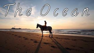 Video The Ocean || Beach Riding Music Video || download MP3, 3GP, MP4, WEBM, AVI, FLV Januari 2018