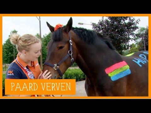 Paard verven voor het WK | PaardenpraatTV