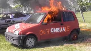 CNEJA (voitures en feu)