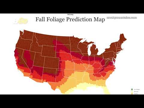 annual-interactive-map-released-showing-the-best-time-&-place-to-view-fall-foliage!