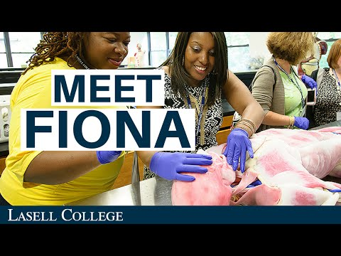 Lasell College: Meet Fiona