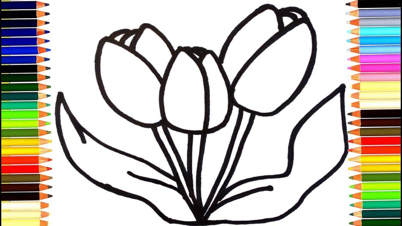 Как нарисовать цветы тюльпаны мультик раскраска учим цвета ...