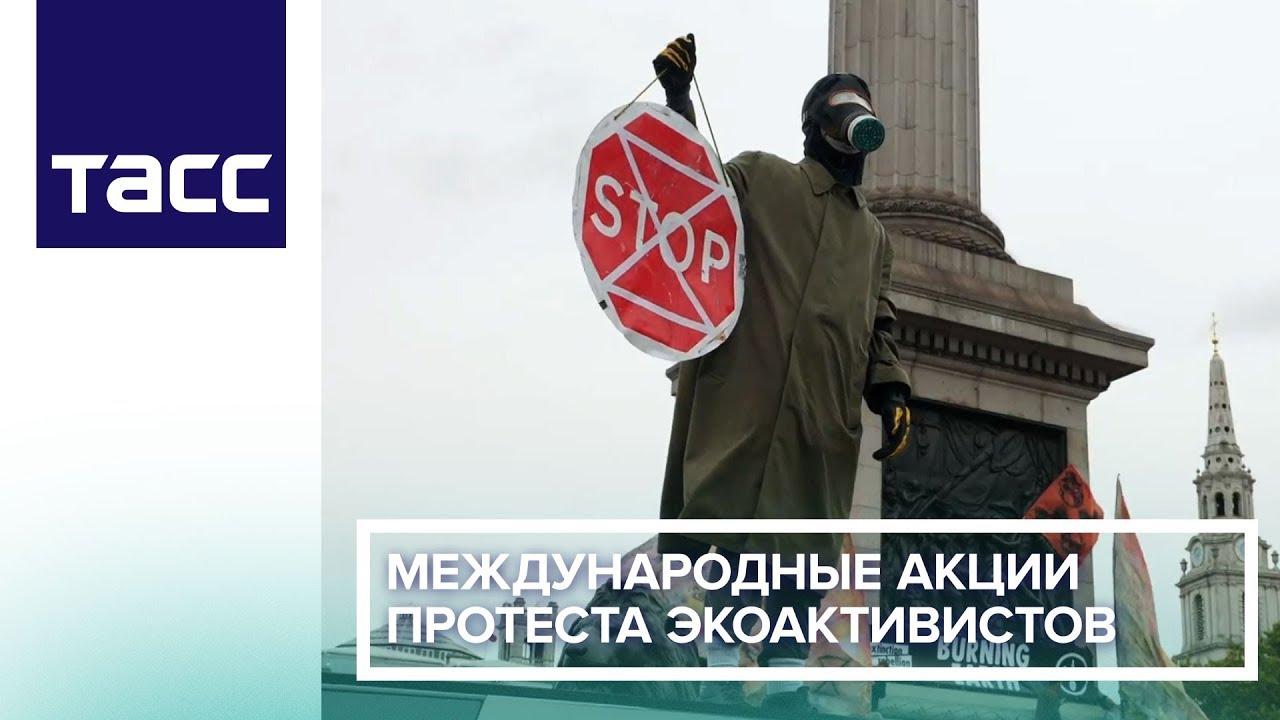 Международные акции протеста экоактивистов