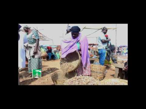 FARMERS MARKET: THE REAL THREAT TO NIGERIA'S POTATO