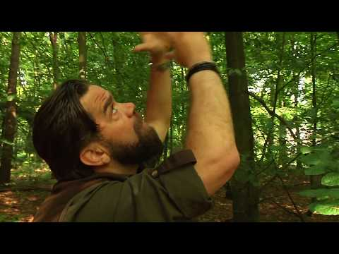 De Boswachters van Arnhem  Afl 2 Blessen