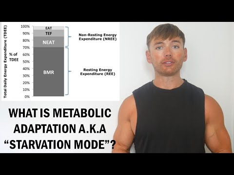 What Is Metabolic Adaptation (Starvation Mode)?