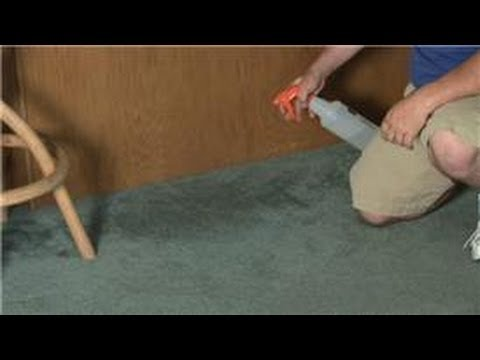 Carpet Cleaning How To Take The Smell Out Of Wet Carpet