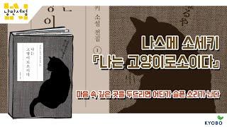 일본 근대 문학의 출발, '소설이 없던 시절의 소설가' 나쓰메 소세키는 ...
