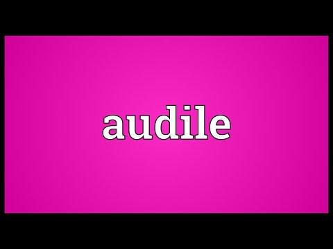 Header of Audile