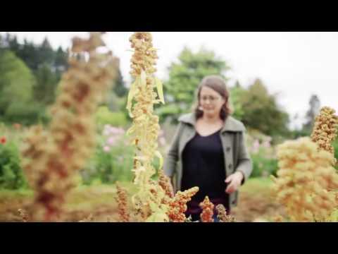 Women in Organics