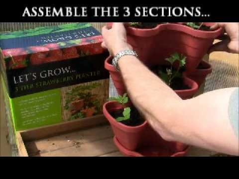 botanico LET'S GROW... 3 tier strawberry and herb planter