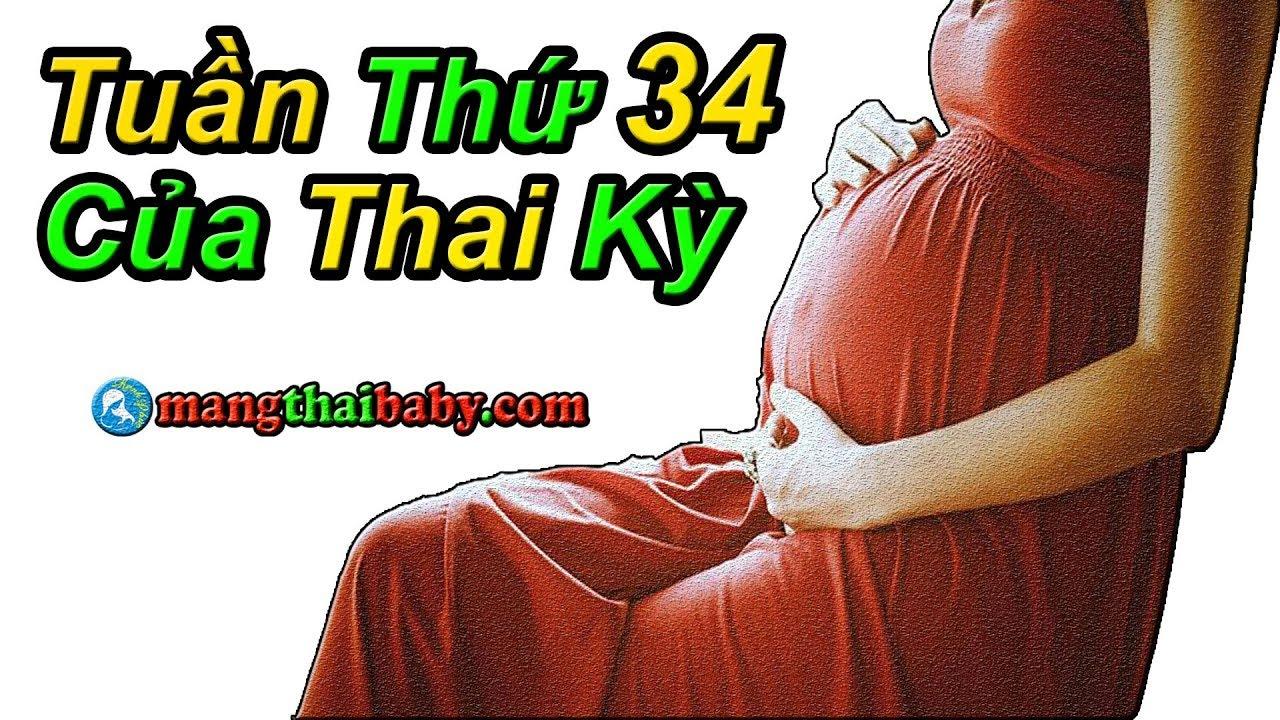 ✅ Sự Hình THành Và PhÁT Triển Của Thai Nhi Tuần Thứ 34 Của 3 Tháng Cuối Thai Kỳ | Mang Thai Tuần 34