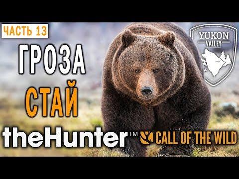 theHunter Call of the Wild #13 🐺 - Гроза Стай - Долина Юкона, Аляска