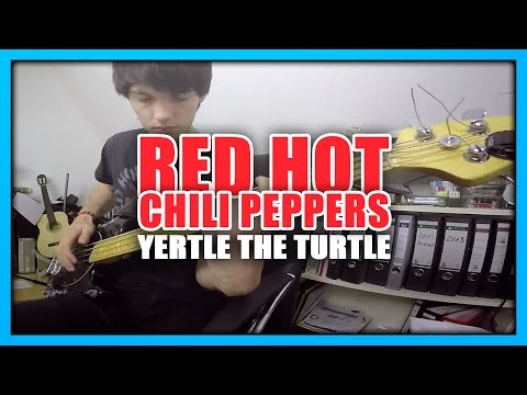 Red Hot Chili Peppers - Yertle The Turtle | Bass Cover