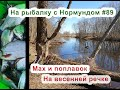 Мах и поплавок на весенней речке: На рыбалку с Нормундом #89