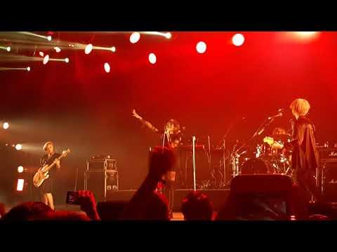 女王蜂- HALF live