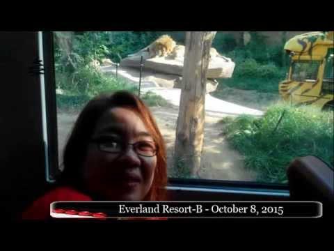Everland Resort B - October 8, 2015