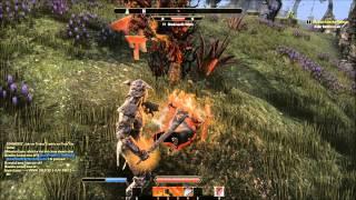 The Elder Scrolls Online - Gameplay#8 [ITA][1080p] - Ozzacha e il Nido di Mephala