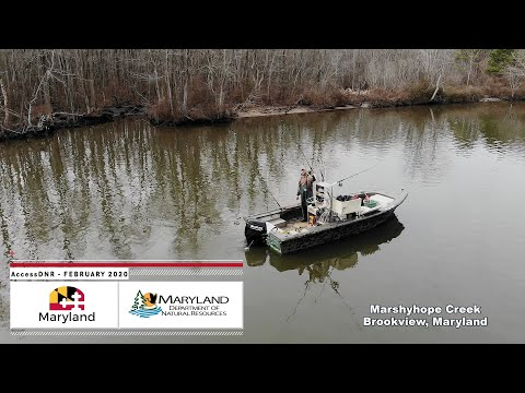 AccessDNR February 2020 - Maryland Department Of Natural Resources