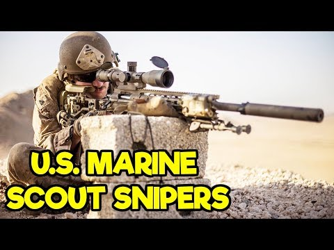 US MARINE SCOUT SNIPERS 2020