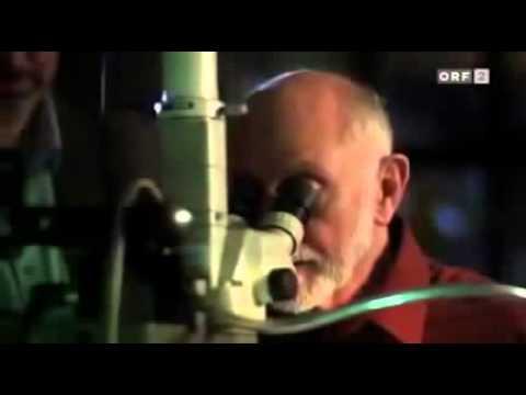 (NEU) Staatsgeheimnisse - Das Voynich Manuskript (Deutsch) - Doku 2014 in HD | Dokumentation