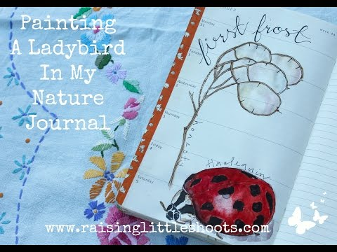 Painting a Ladybird in my nature journal in my nature journal