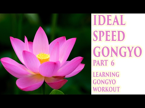 Round 6: Ideal Speed Gongyo