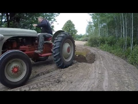 Ford 8N Tractor & Backblade - Field Land Clearing Project Part 5: Building The Access Road
