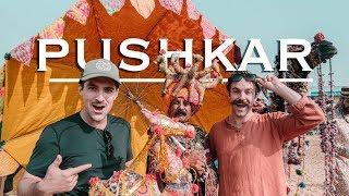 Pushkar Camel Fair | India's Coolest Festival?