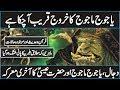 The Arrival of Yajooj Majooj In Urdu Hindi | End Of Times