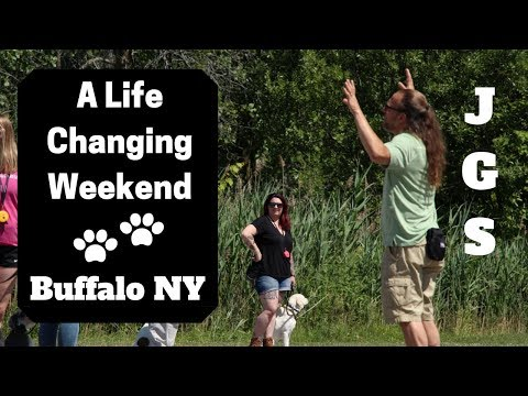 a-life-changing-weekend---buffalo-ny-(2019)---jeff-gellman-semimars