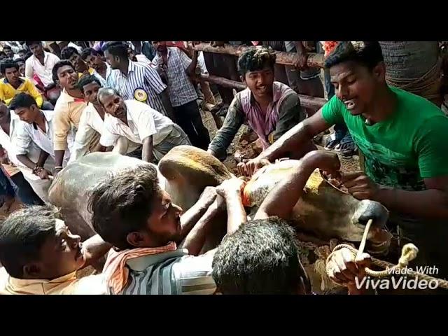 Lakshmipuram junior mangatha...