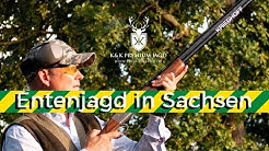 Entenjagd Sachsen - K&K Premium Jagd Duckhunting