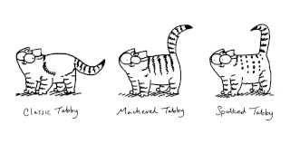 Simon Draws.Как рисовать кота Саймона.(, 2014-01-30T03:52:25.000Z)
