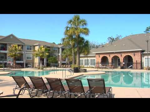 West Gainesville Florida | Swamp Rentals | Apartment Guide