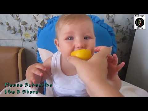 Funny videos for Kids & Babies MPEG2