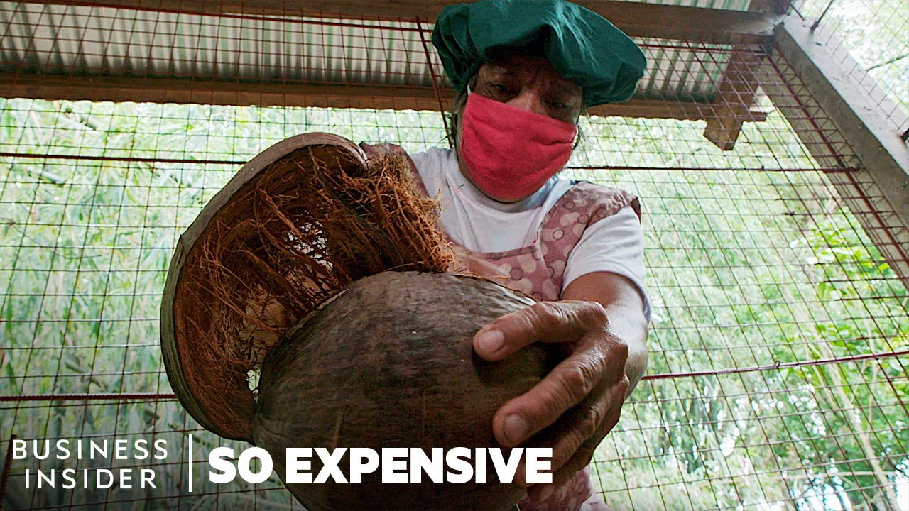 Why Coconut Oil Is So Expensive | So Expensive