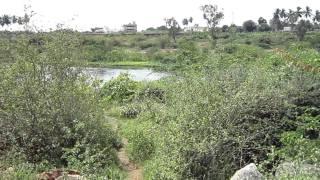 Sathyamangalam Fort 2.MOV